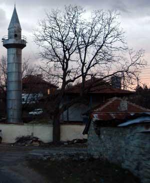 local village Mosque in Bulgaria