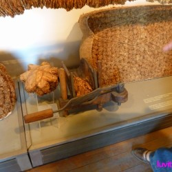 kardjali-museum038