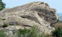 lavat the Bulgarian Lion Luv