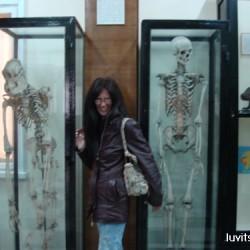sofia-museum027