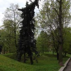 sofia-museum210