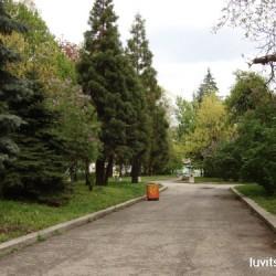 sofia-museum216