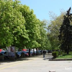 sofia-museum311